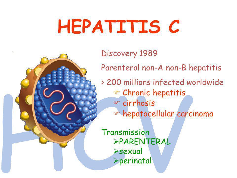 HCV HEPATITIS C Discovery 1989 Parenteral non-A non-B hepatitis