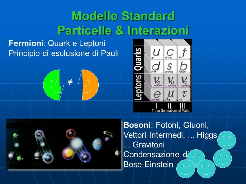 Modello Standard Particelle & Interazioni