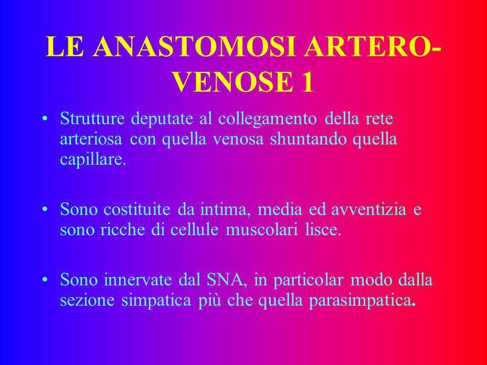 LE ANASTOMOSI ARTERO-VENOSE 1