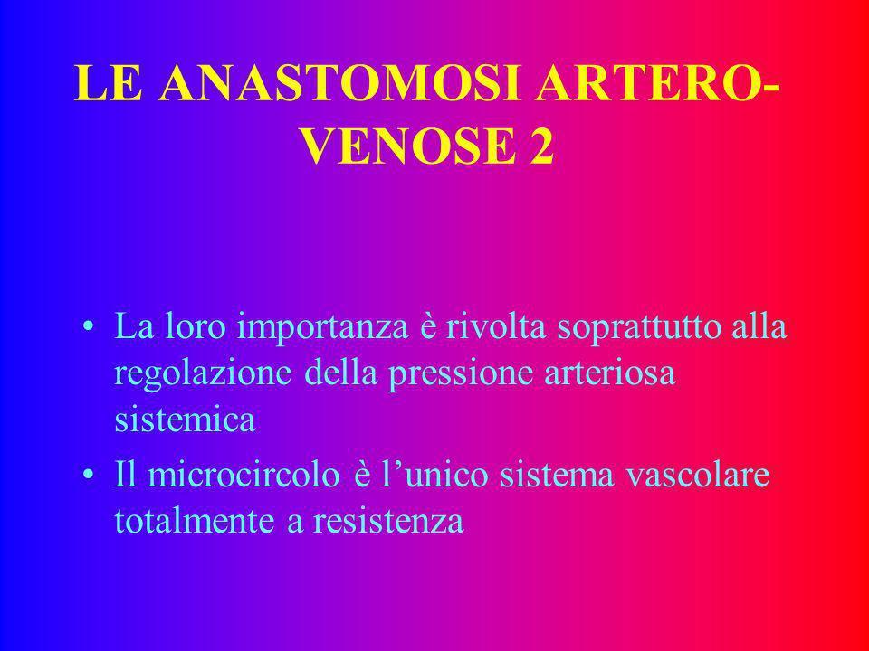 LE ANASTOMOSI ARTERO-VENOSE 2