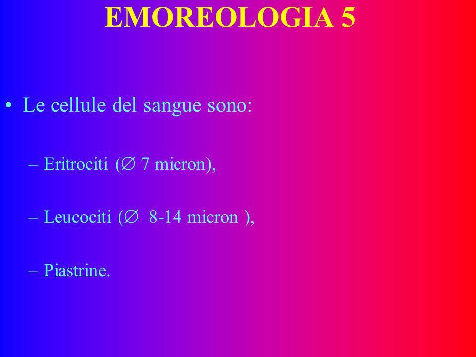 EMOREOLOGIA 5 Le cellule del sangue sono: Eritrociti ( 7 micron),