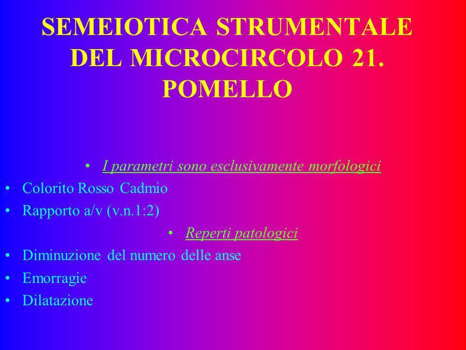 SEMEIOTICA STRUMENTALE DEL MICROCIRCOLO 21. POMELLO