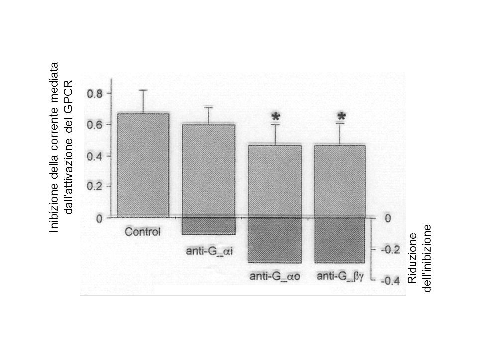 Inibizione della corrente mediata dall'attivazione del GPCR