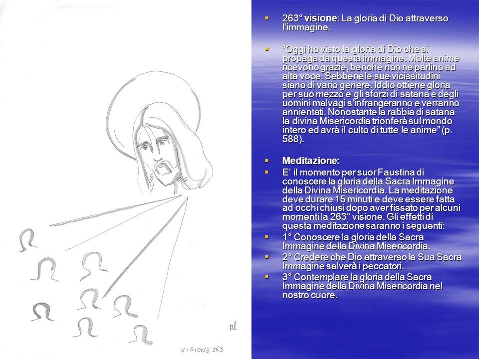 263° visione: La gloria di Dio attraverso l'immagine.