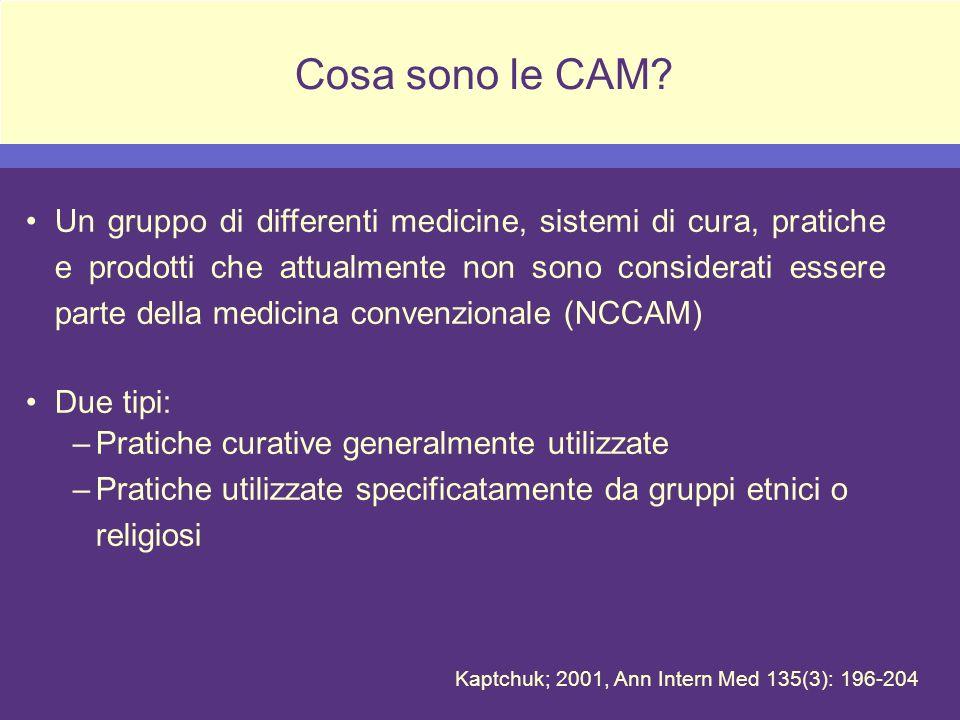 Cosa sono le CAM