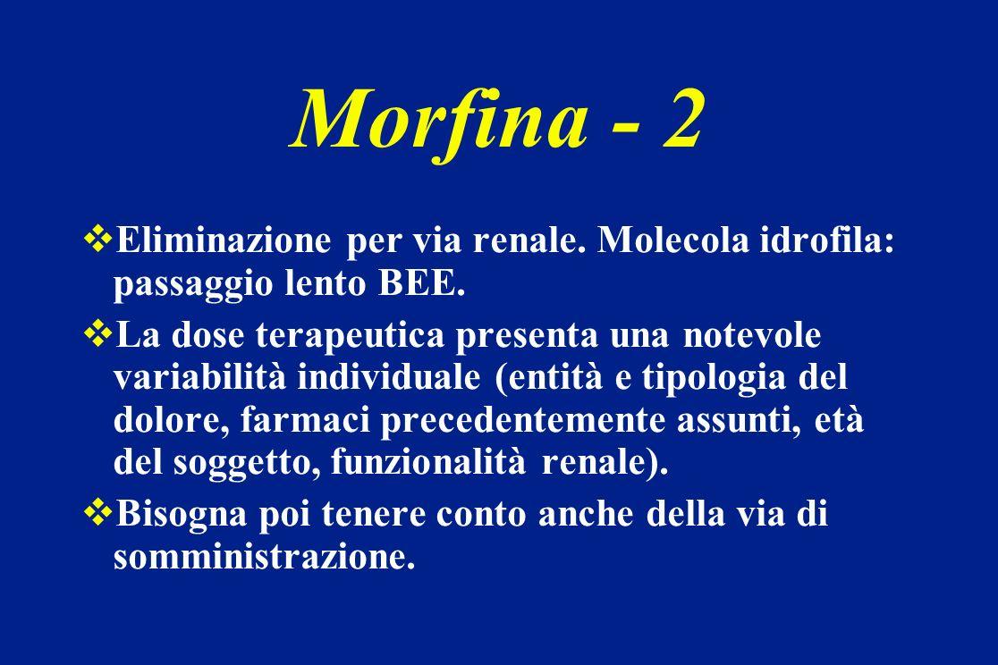 Morfina - 2 Eliminazione per via renale. Molecola idrofila: passaggio lento BEE.