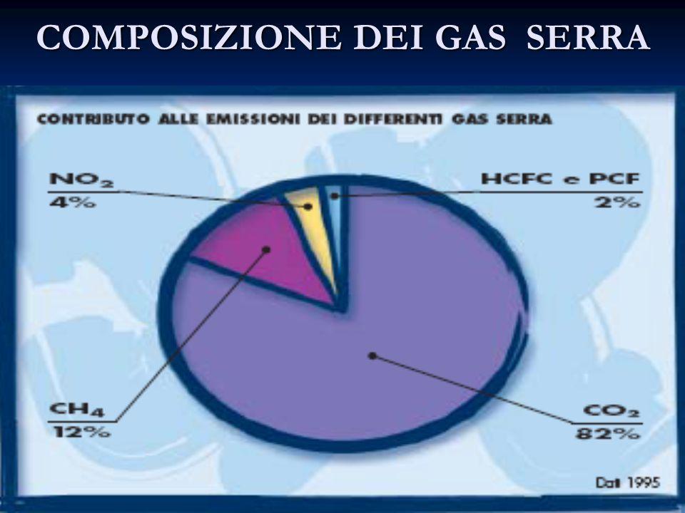 COMPOSIZIONE DEI GAS SERRA