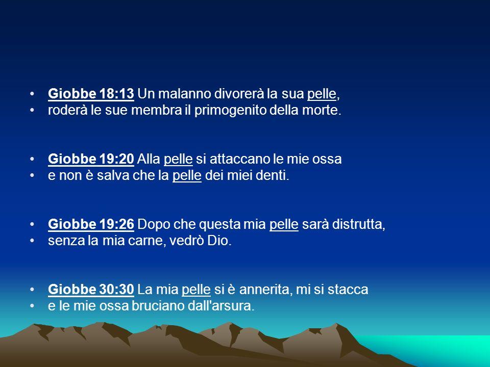Giobbe 18:13 Un malanno divorerà la sua pelle,
