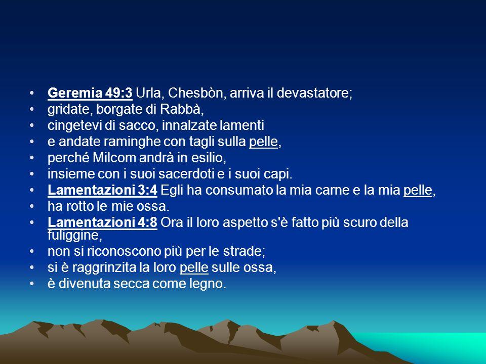 Geremia 49:3 Urla, Chesbòn, arriva il devastatore;