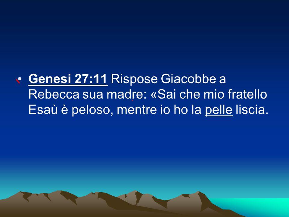 Genesi 27:11 Rispose Giacobbe a Rebecca sua madre: «Sai che mio fratello Esaù è peloso, mentre io ho la pelle liscia.