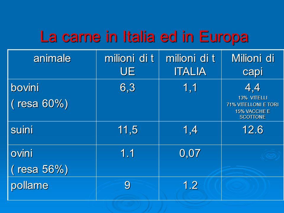 La carne in Italia ed in Europa