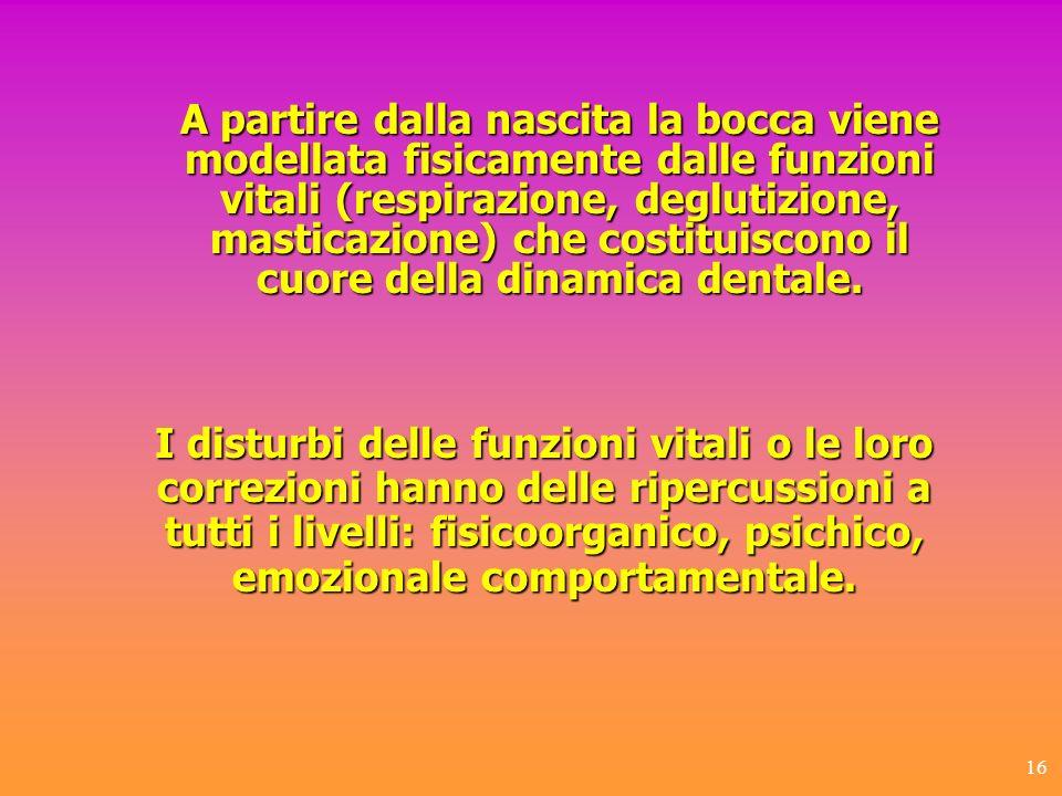 A partire dalla nascita la bocca viene modellata fisicamente dalle funzioni vitali (respirazione, deglutizione, masticazione) che costituiscono il cuore della dinamica dentale.