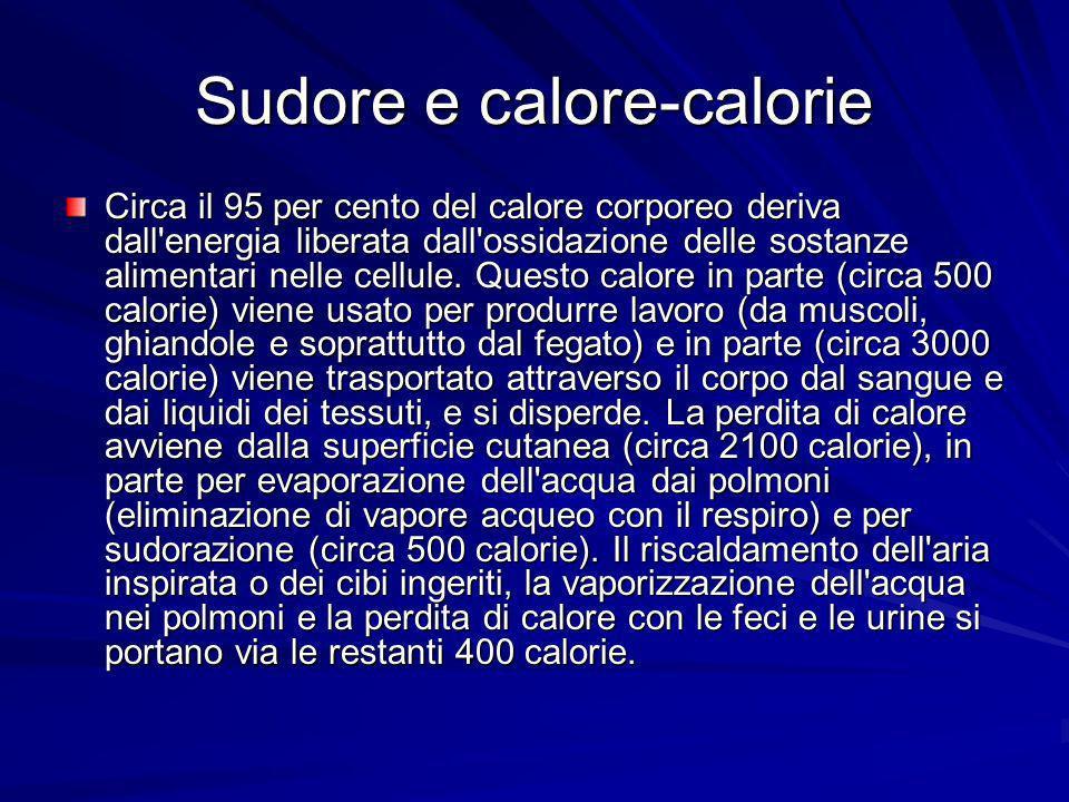 Sudore e calore-calorie