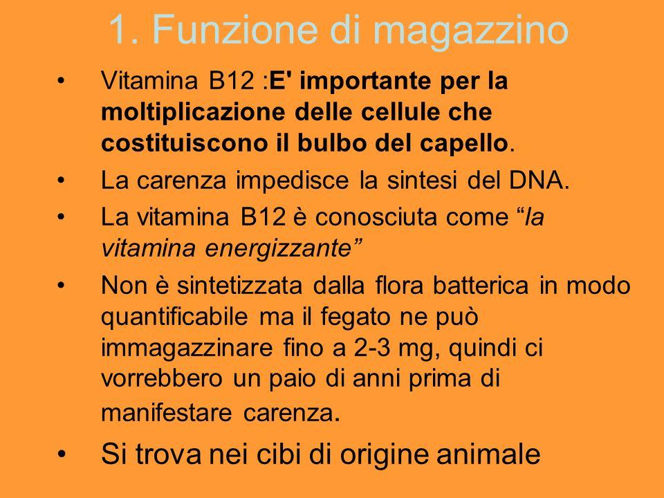 1. Funzione di magazzino Si trova nei cibi di origine animale