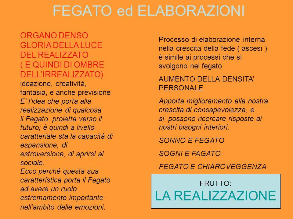 FEGATO ed ELABORAZIONI