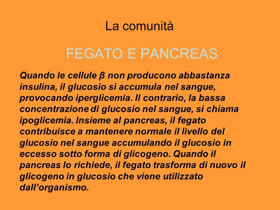 FEGATO E PANCREAS La comunità