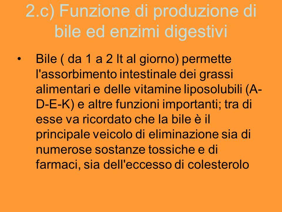 2.c) Funzione di produzione di bile ed enzimi digestivi