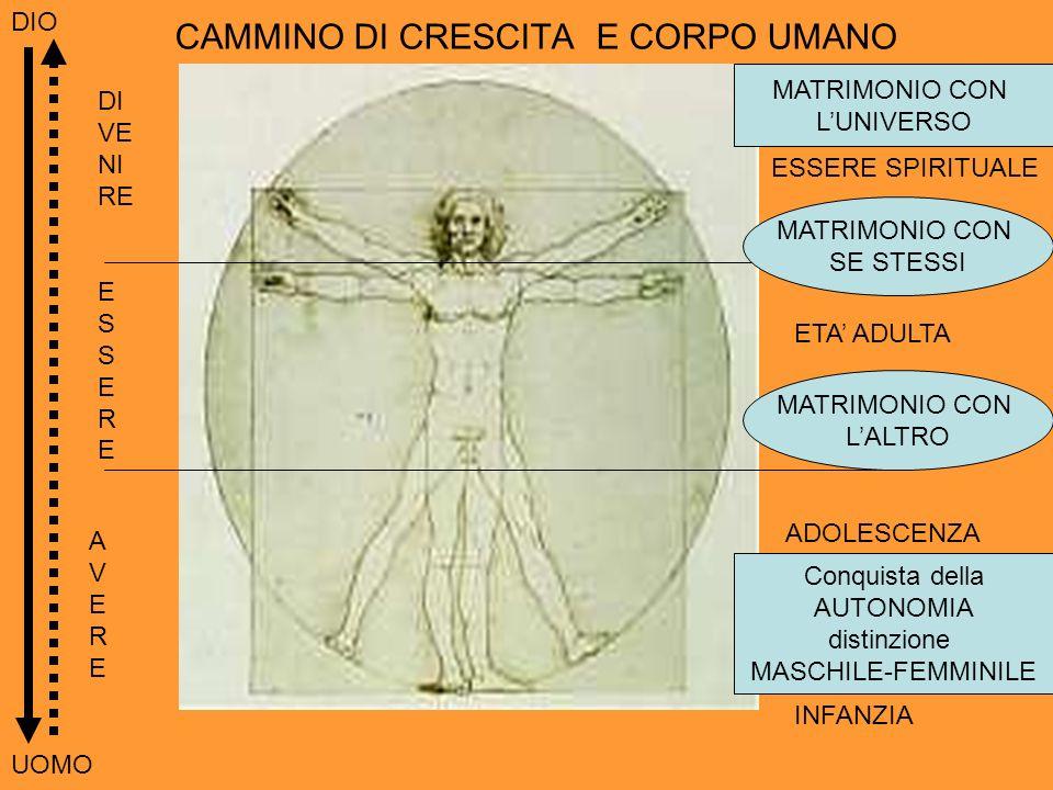 CAMMINO DI CRESCITA E CORPO UMANO