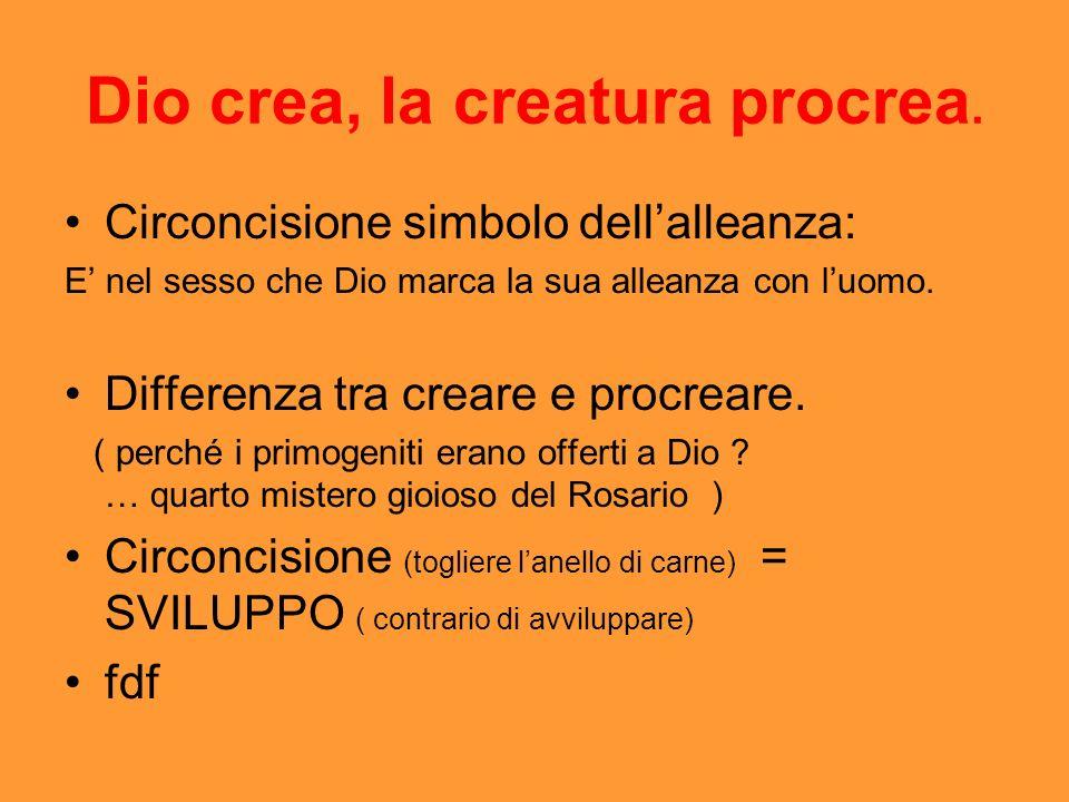 Dio crea, la creatura procrea.