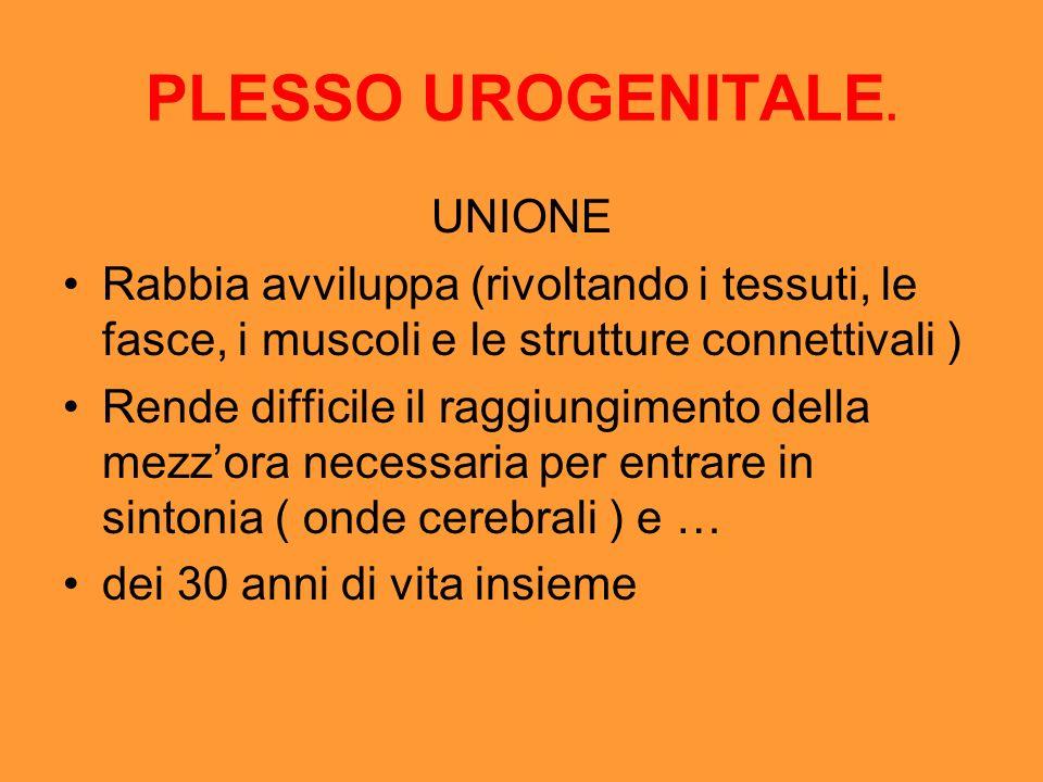 PLESSO UROGENITALE. UNIONE