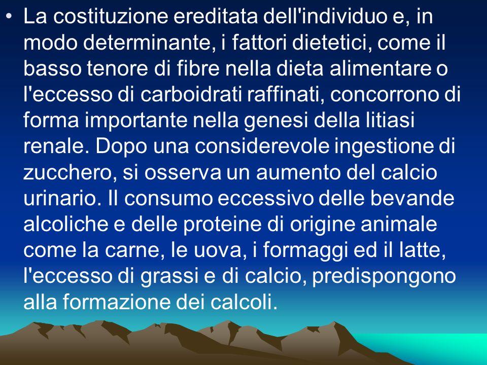 La costituzione ereditata dell individuo e, in modo determinante, i fattori dietetici, come il basso tenore di fibre nella dieta alimentare o l eccesso di carboidrati raffinati, concorrono di forma importante nella genesi della litiasi renale.