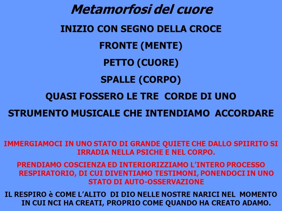 Metamorfosi del cuore INIZIO CON SEGNO DELLA CROCE FRONTE (MENTE)