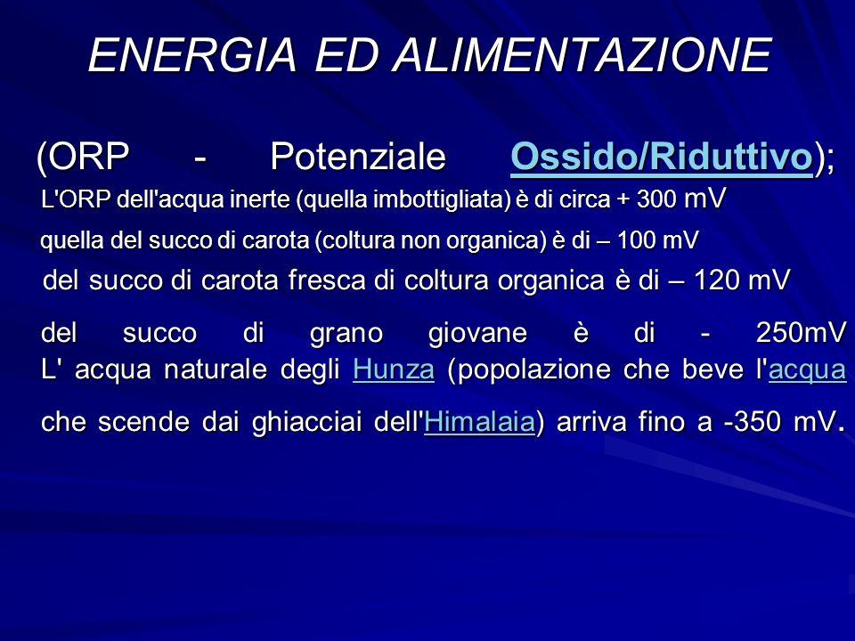 ENERGIA ED ALIMENTAZIONE