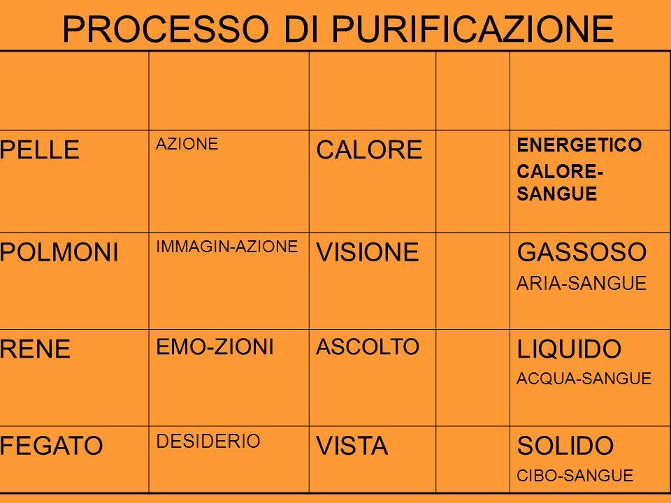 PROCESSO DI PURIFICAZIONE