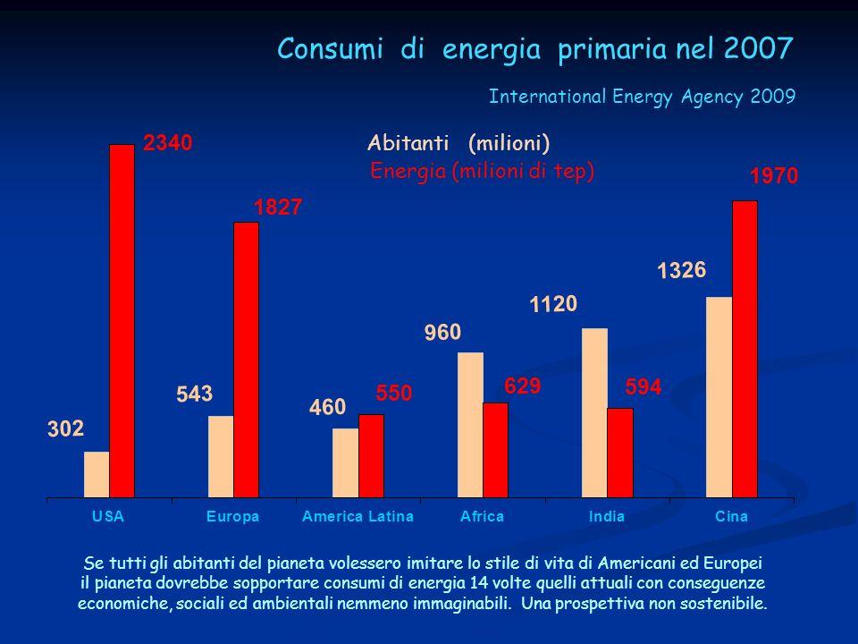 Consumi di energia primaria nel 2007