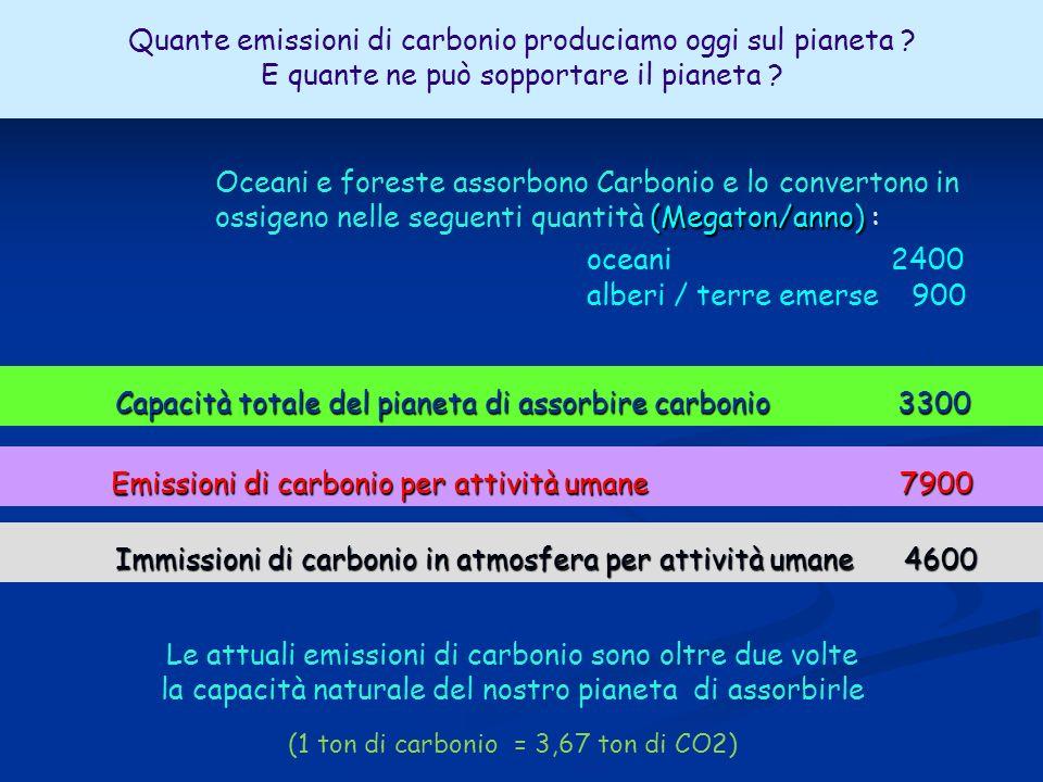 Imissioni di carbonio in atmosfera