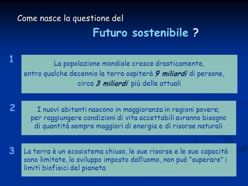 Futuro sostenibile 1 2 3 Come nasce la questione del