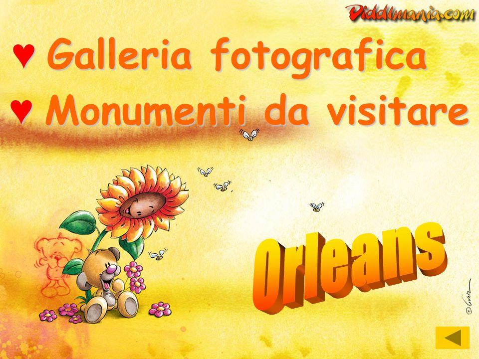 Galleria fotografica Monumenti da visitare Orleans