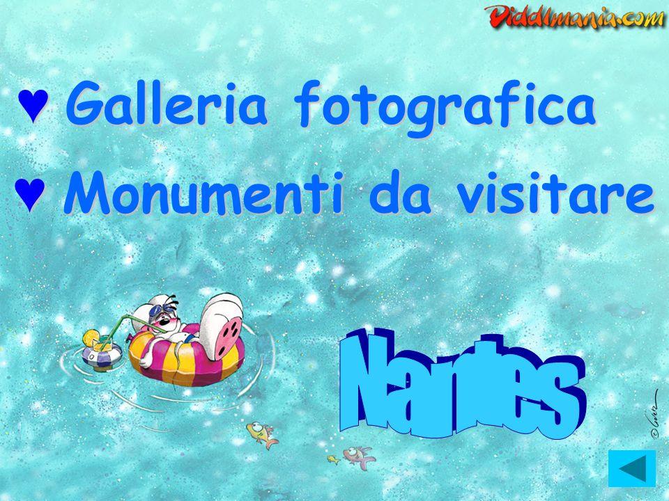 Galleria fotografica Monumenti da visitare Nantes