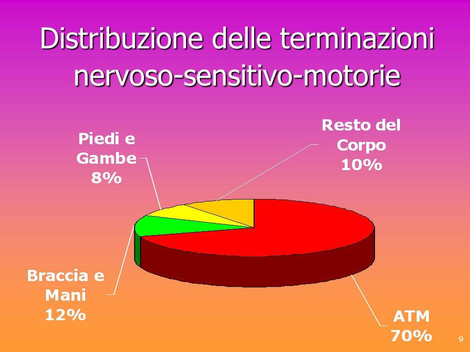 Distribuzione delle terminazioni nervoso-sensitivo-motorie