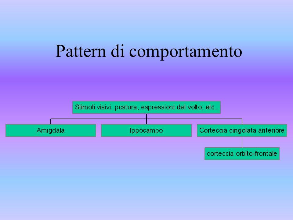 Pattern di comportamento