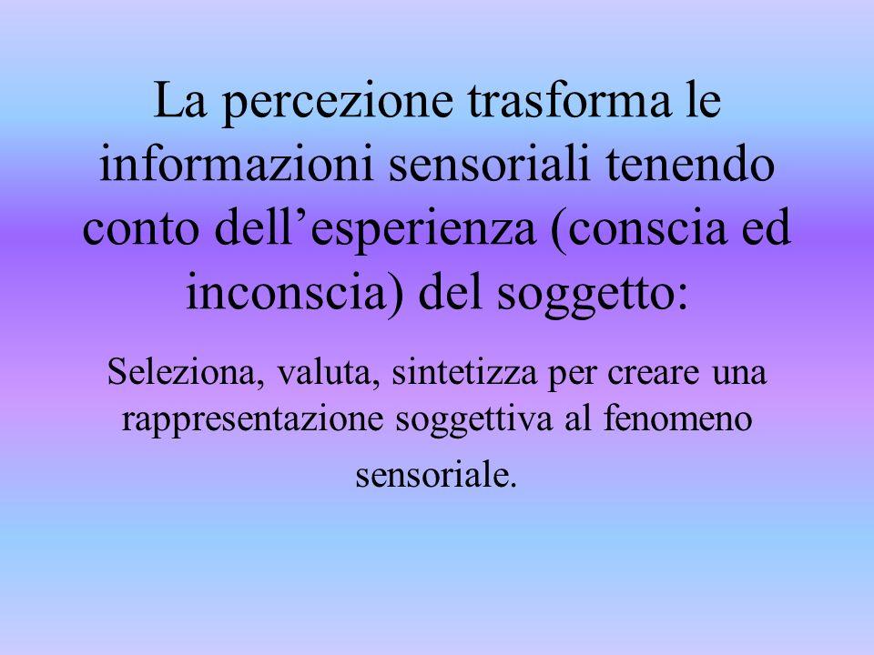 La percezione trasforma le informazioni sensoriali tenendo conto dell'esperienza (conscia ed inconscia) del soggetto: