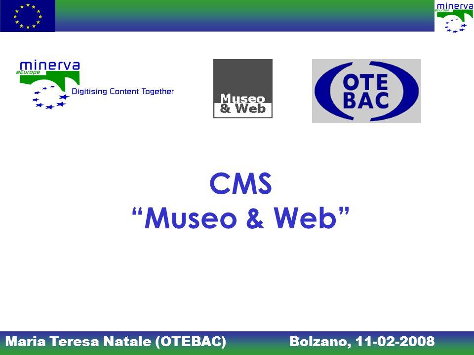CMS Museo & Web