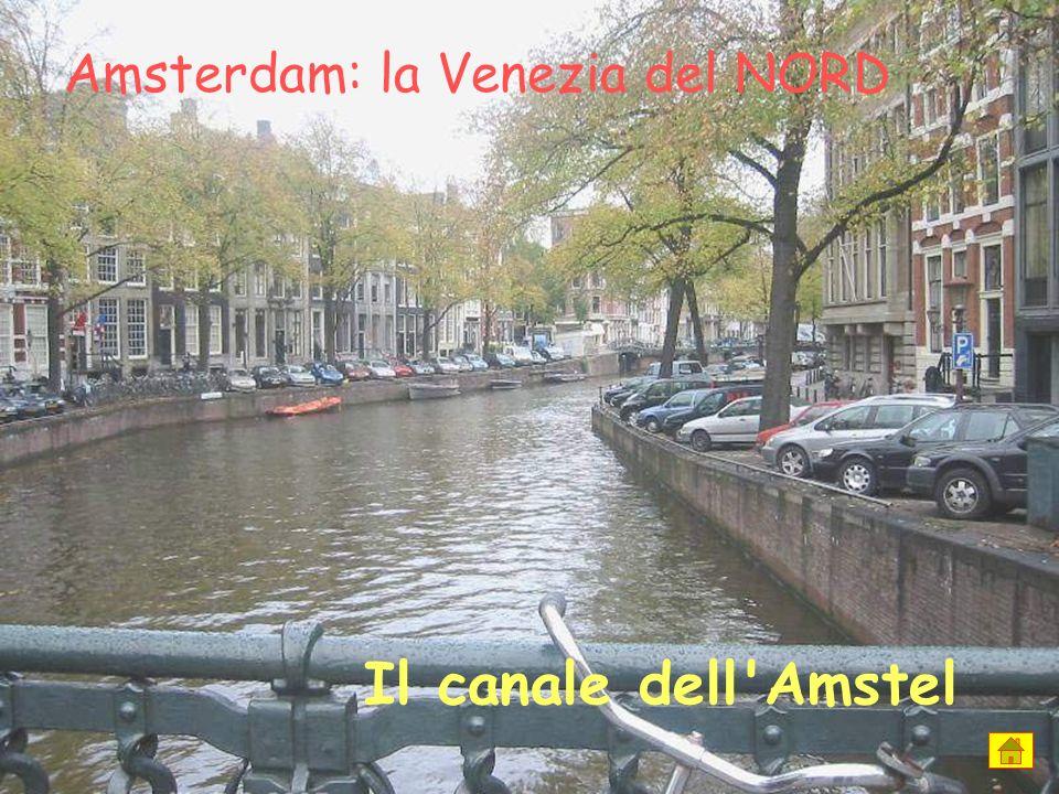 Amsterdam: la Venezia del NORD