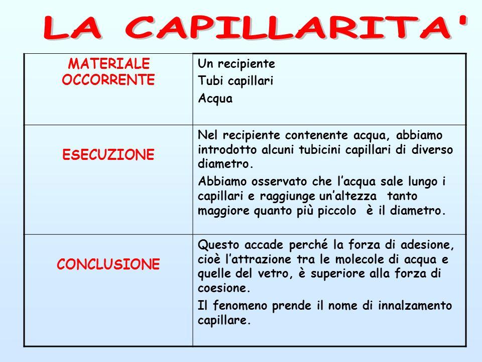 LA CAPILLARITA MATERIALE OCCORRENTE ESECUZIONE CONCLUSIONE