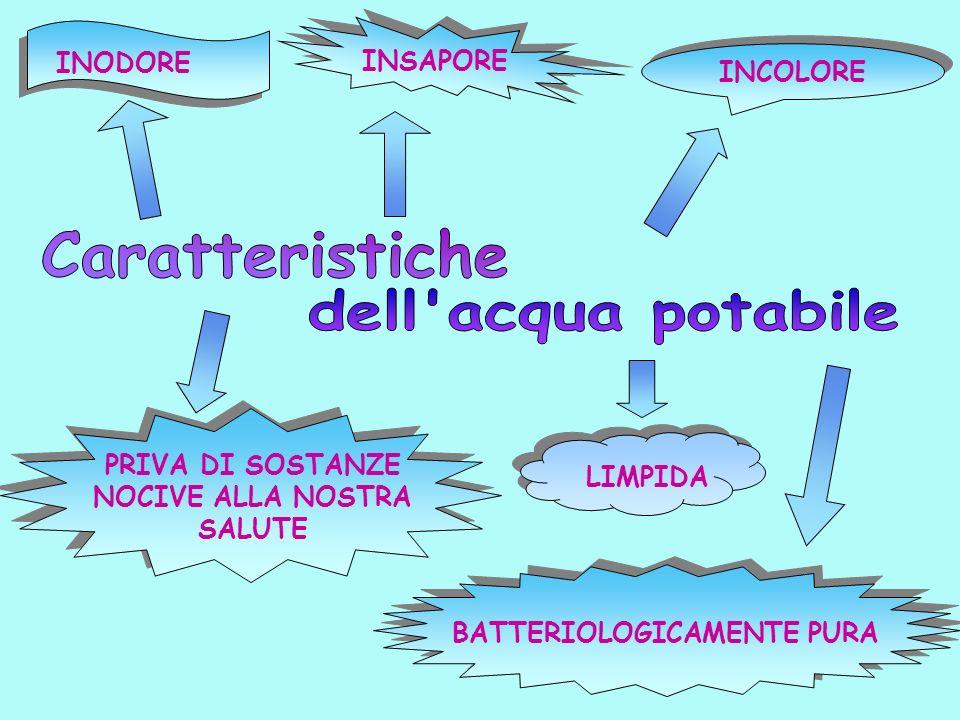 PRIVA DI SOSTANZE NOCIVE ALLA NOSTRA SALUTE BATTERIOLOGICAMENTE PURA