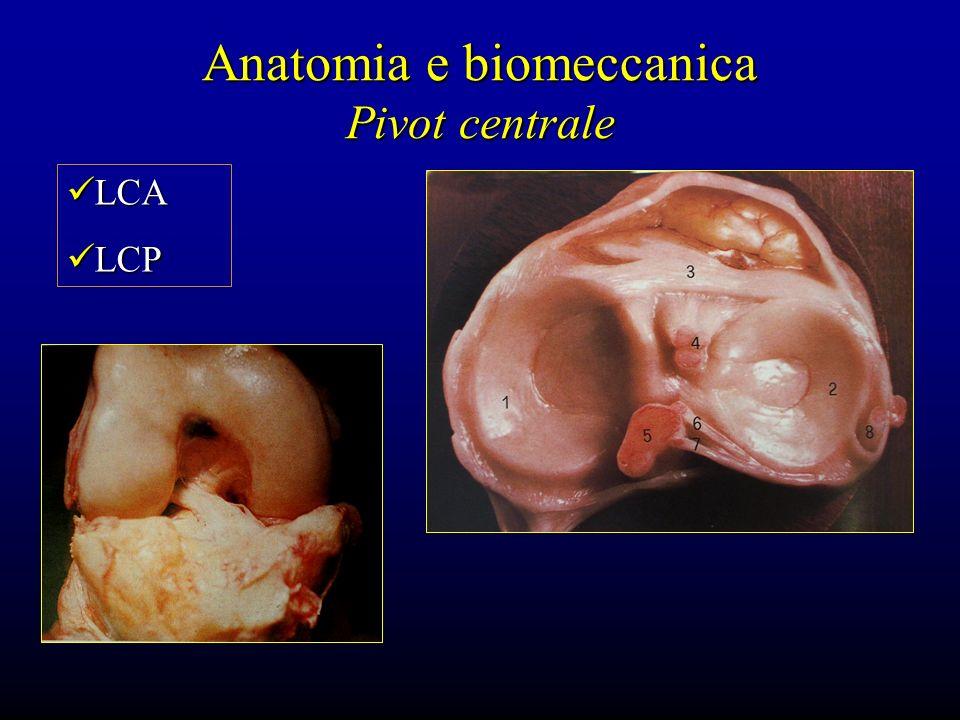 Anatomia e biomeccanica Pivot centrale