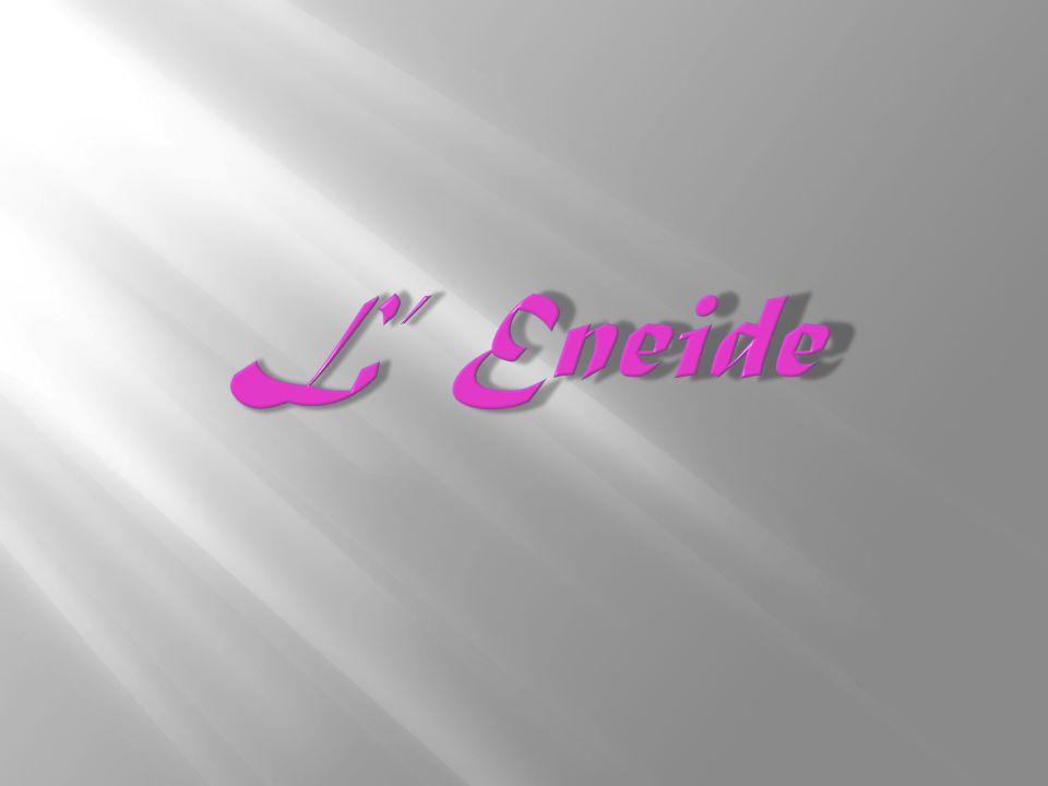 L' Eneide