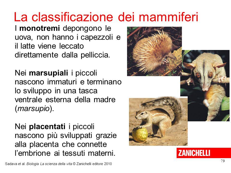 La classificazione dei mammiferi