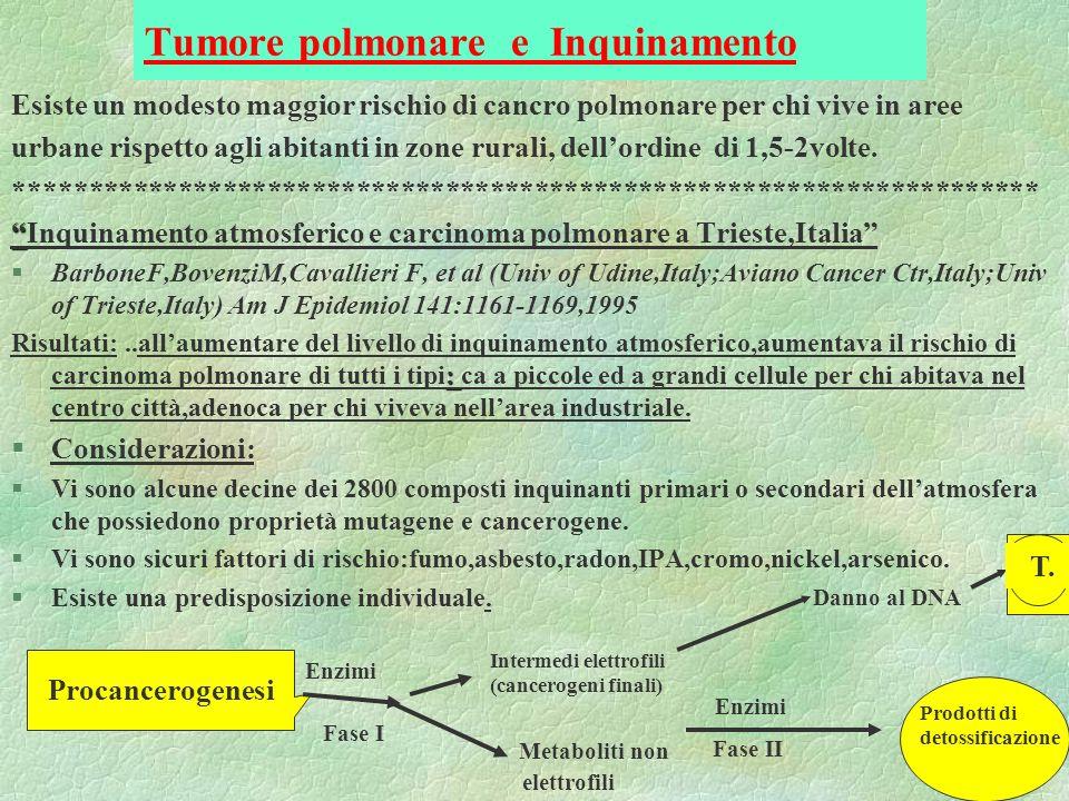 Tumore polmonare e Inquinamento