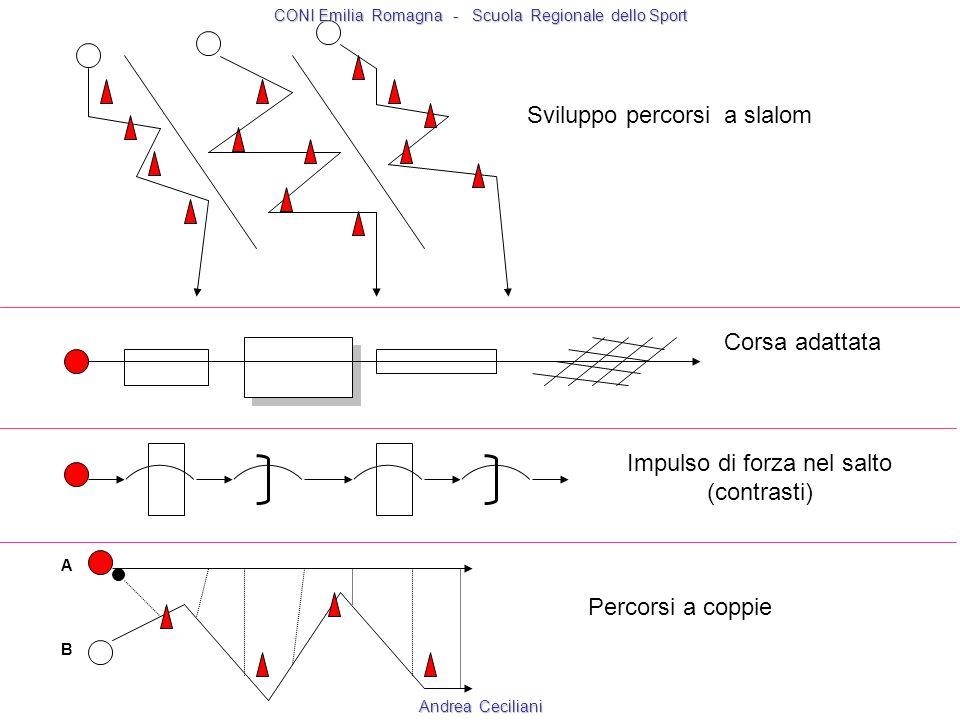 Sviluppo percorsi a slalom