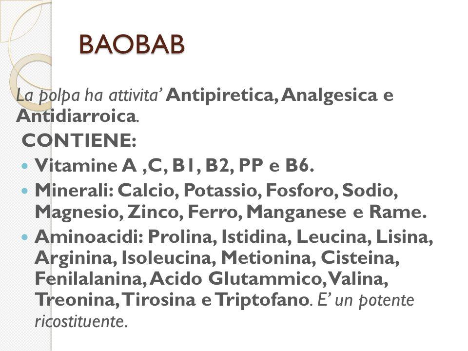 BAOBAB La polpa ha attivita' Antipiretica, Analgesica e Antidiarroica.