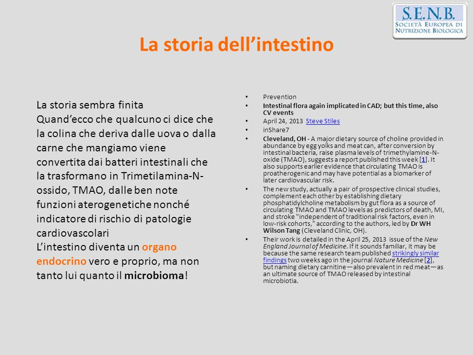 La storia dell'intestino