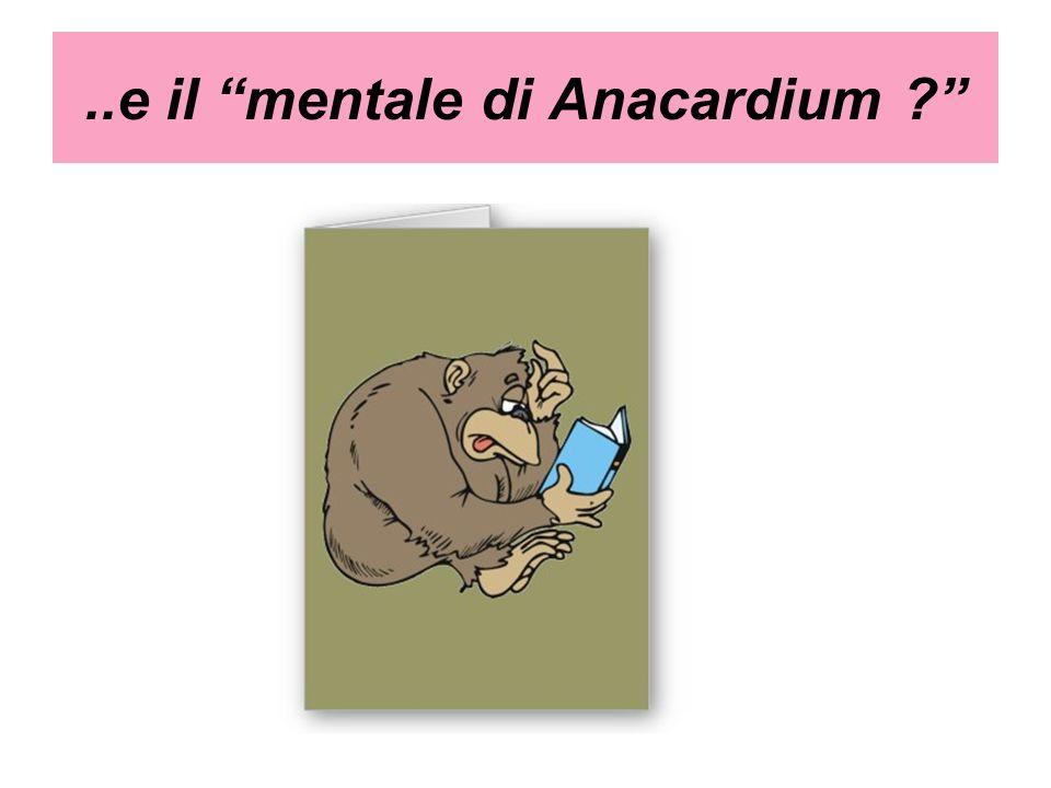 ..e il mentale di Anacardium