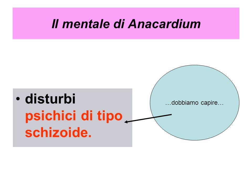 Il mentale di Anacardium