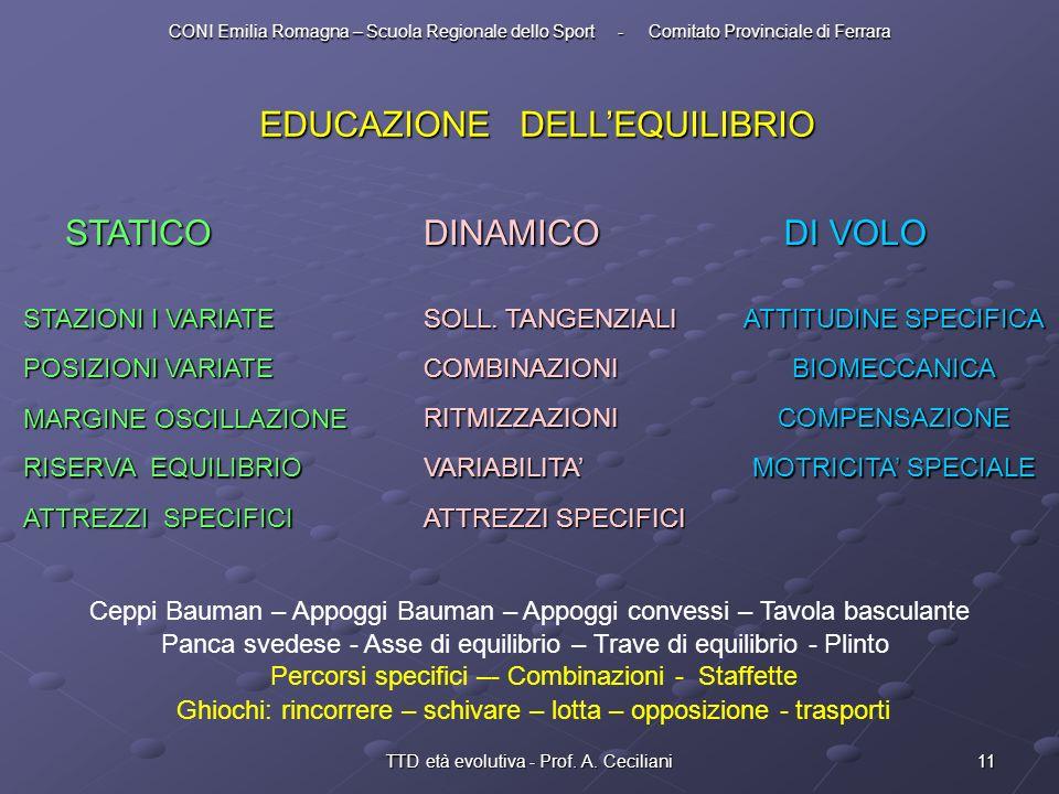 EDUCAZIONE DELL'EQUILIBRIO